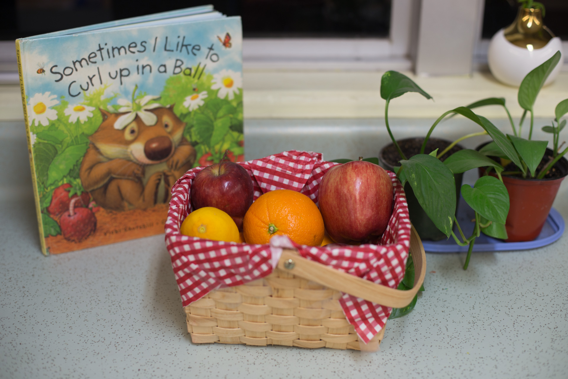 Book and fruits